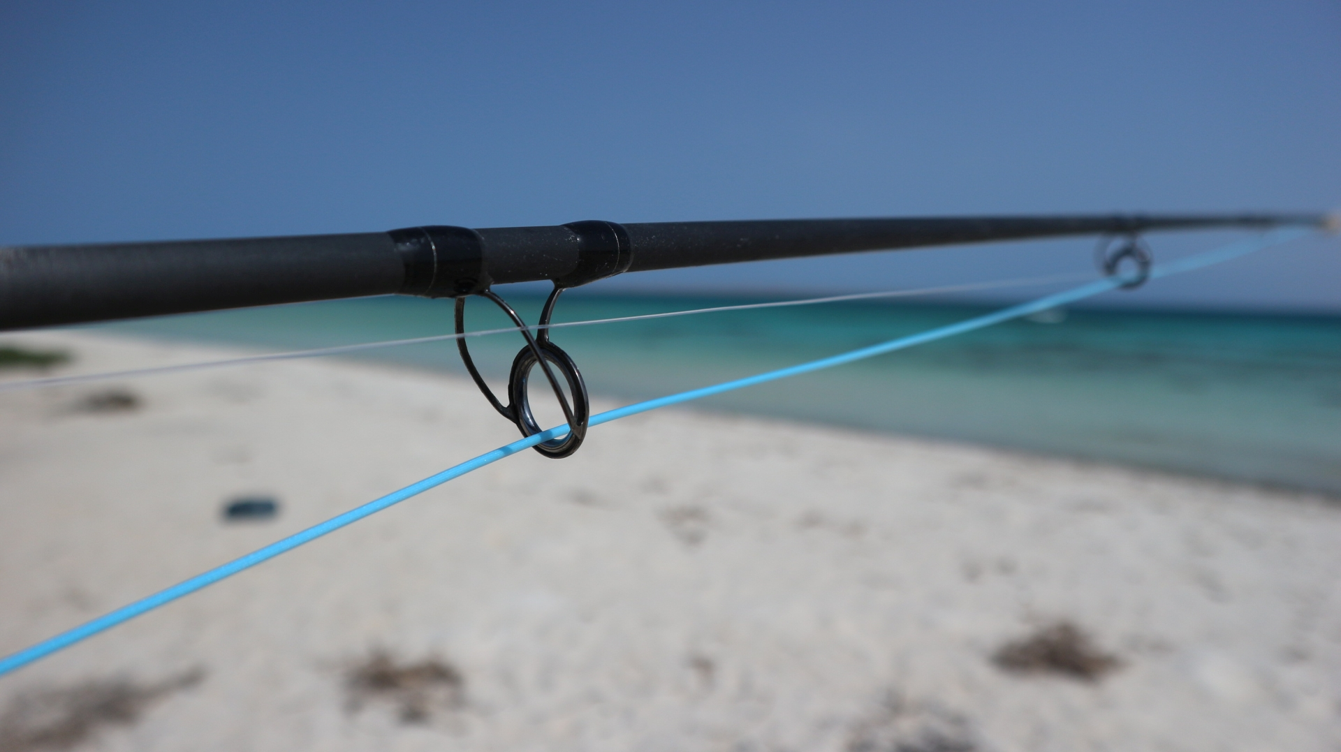 The edge gamma beta fly rods redefine top performance i for Edge fishing rods