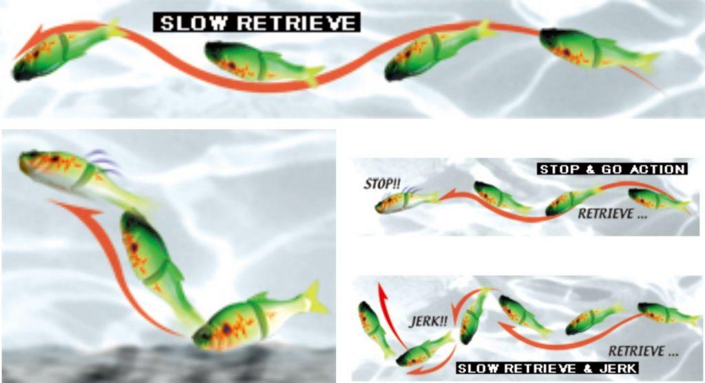 Stilurile de recuperare recomandate de producător, dar care pot fi modificate și adaptate în funcție de situație.
